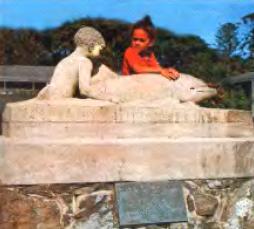 Памятник дельфину Опо-Джеку