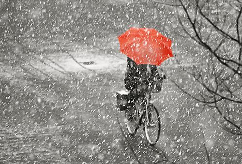 Велосипед с зонтом