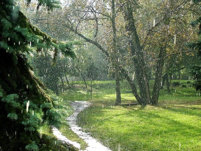 дождь падают капли слушать
