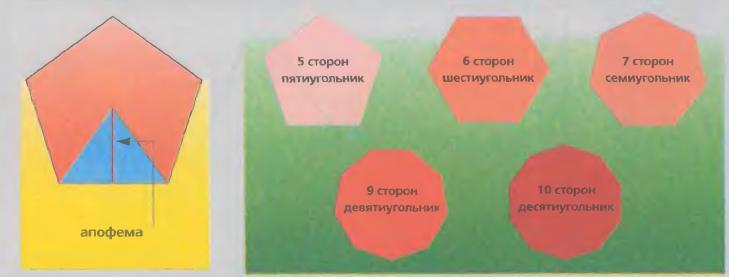 Апофема многоугольника