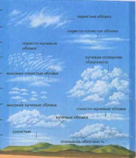 Как называются самые высокие облака
