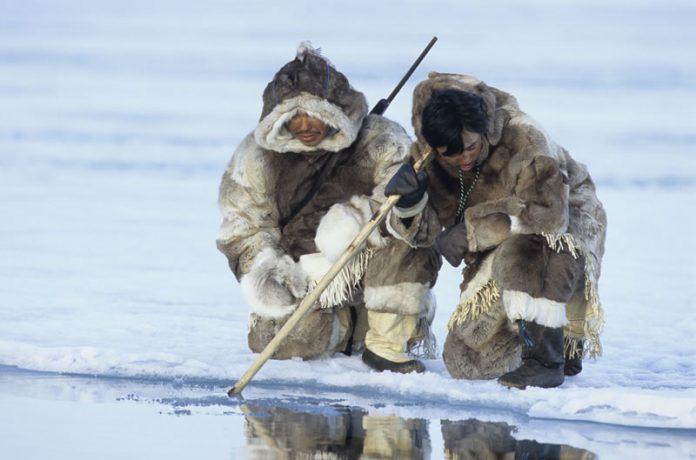 Факты об эскимосах