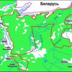 Леса. Заповедники и национальные парки