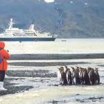 Почему Антарктида должна стать заповедником?