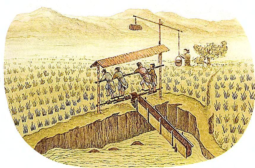 Насос для выращивания риса