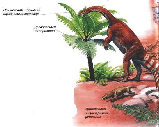 Животные триасового периода