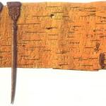 Почему новгородцы писали берестяные письма?
