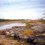 Что такое приливы и отливы?