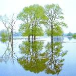Как вода и ветер изменяют рельеф равнин?