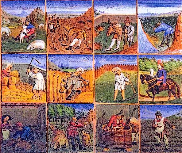 Сельскохозяйственный календарь