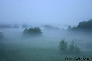Что такое туман? Виды тумана