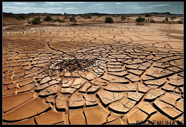 Температуры пустынь
