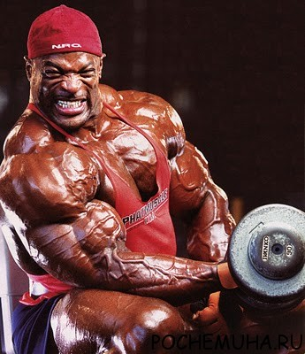 Как быстро накачать мышцы?
