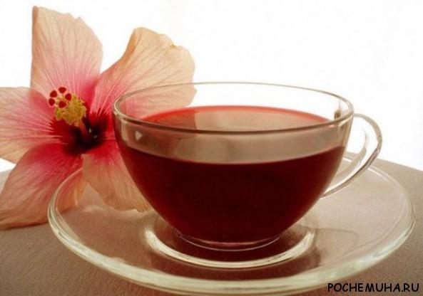 Чай каркаде полезен мужчинам