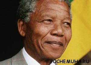 Кем был Нельсон Мандела