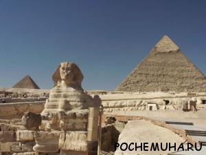 Почему кориандр вкладывали в гробницы фараонов