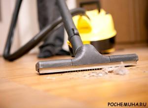 Как избавить дом от пыли и микробов