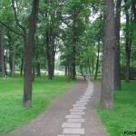 Что скрывают деревья Таврического Сада?