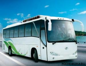 Есть ли будущее у электрических автобусов