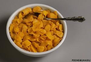 Когда изобрели кукурузные хлопья к завтраку