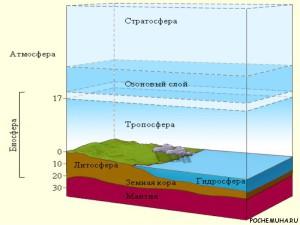Сколько весит биосфера