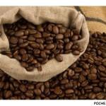 Как выбрать зерновой кофе?