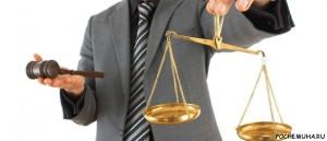 Правильный выбор юриста