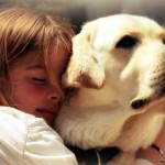 Какое домашнее животное подходит для ребёнка?