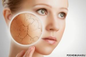 Как правильно очищать сухую кожу?