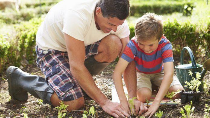 Как испортить летние каникулы: почему не стоит привлекать ребенка к огородным работам?